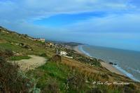 Panoramica di Manfria (3344 clic)