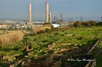 Scavi Archeologici Panoramica di una Necropoli, ruderi che si dividono il territorio con L'Anice, Industria petrolchimica di Gela.  - Gela (4934 clic)