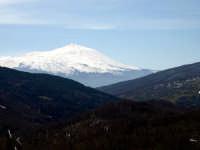 Etna Vista da Floresta (ME)  - Floresta (8801 clic)