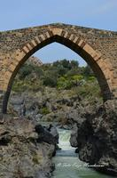 Particolare del Ponte dei Saraceni Di origine romana, questo ponte, i cui archi a sesto acuto sono ornati da una fascia di pietra bicroma, è stato ricostruito sotto Ruggero II. Costeggiando il fiume (il Simeto) verso Nord, potrete scoprire le gole del Simeto, formate, come quelle dell'Alcàntara, da una colata di lava i cui enormi massi di basalto sono stati levigati dall'acqua.  - Bronte (1762 clic)