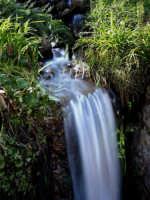 Corsi d'acqua Sinagra -ME- Sorgente Naturale D'Acqua nel Territorio di Sinagra  - Sinagra (15517 clic)