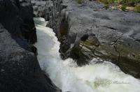 Gole del Simeto Gole del Simeto, formate, come quelle dell'Alcàntara, da una colata di lava i cui enormi massi di basalto sono stati levigati dall'acqua.  - Bronte (1439 clic)
