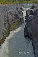Gole del Simeto Gole del Simeto, formate, come quelle dell'Alcàntara, da una colata di lava i cui enormi massi di basalto sono stati levigati dall'acqua.   - Bronte (1657 clic)