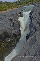 Gole del Simeto Gole del Simeto, formate, come quelle dell'Alcàntara, da una colata di lava i cui enormi massi di basalto sono stati levigati dall'acqua.   - Bronte (1530 clic)