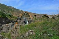 Ponte Saraceno Di origine romana, questo ponte, i cui archi a sesto acuto sono ornati da una fascia di pietra bicroma, è stato ricostruito sotto Ruggero II. Costeggiando il fiume (il Simeto) verso Nord, potrete scoprire le gole del Simeto, formate, come quelle dell'Alcàntara, da una colata di lava i cui enormi massi di basalto sono stati levigati dall'acqua.  - Bronte (1596 clic)