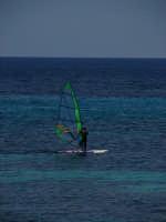 windsurf  windsurf in attività nel Mare di Sferracavallo   - Sferracavallo (3351 clic)