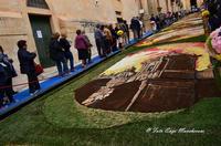 Noto, Infiorata 2012 (2531 clic)