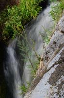 Gole dell'Alcantare Gole dell'Alcantare nella zona del comune di Moio Alcantara.  - Moio alcantara (1971 clic)