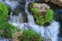 Gole dell'Alcantare Gole dell'Alcantare nella zona del comune di Moio Alcantara.  - Moio alcantara (2150 clic)