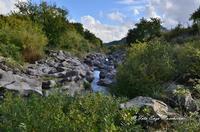 Gole dell'Alcantare Gole dell'Alcantare nella zona del comune di Moio Alcantara.  - Moio alcantara (2317 clic)