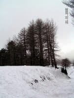 Etna,   - Linguaglossa (2199 clic)