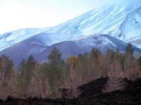 Etna, Cratere Concazza Etna, Cratere Concazza  - Linguaglossa (2458 clic)