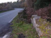 Danni provocati dalla faglia apertosi nella spaventosa eruzione Etna del 2002.  - Linguaglossa (3428 clic)