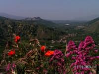 Valle dell'Alcantara  - Motta camastra (3562 clic)
