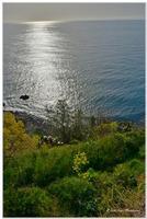 Parco Naturale La Timpa  Acireale (1360 clic)