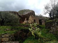 Motta Camastra, Casetta rurale diroccata. (792 clic)