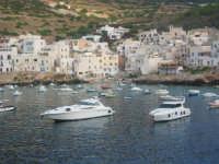 Levanzo:il porto. Bellissima isola delle Egadi dove la tranquillità è garantita, caratteristiche la casette con le finestre di colore blu.  - Levanzo (7592 clic)