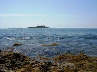 MARE VERO  - Isola delle correnti (4483 clic)
