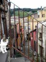 particolare architettonico  - Buccheri (3550 clic)