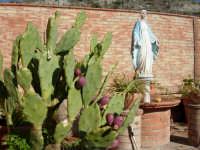 MADONNINA DELLA STAZIONE DI VILLAROSA  - Villarosa (3695 clic)
