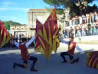 Raduno Fafit, esibizione degli Sbandieratori e Musici Leoni Reali di Camporotondo Etneo (CT)  - Gualtieri sicaminò (4241 clic)