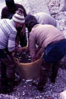 pescatori  - Messina (2927 clic)