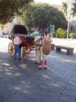 carrozza a piazza duomo  - Messina (3453 clic)