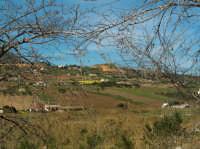 Alcamo  - Alcamo (1460 clic)