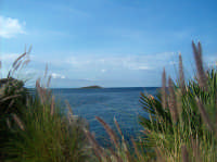 ISOLA DELLE FEMMINE  - Isola delle femmine (2081 clic)