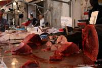 la tonnina (tonno) esposta sul bancone di un pescivendolo nel mercato di ortigia  - Siracusa (5985 clic)
