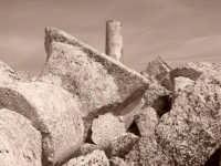 Ruderi Archeologici di Selinunte  - Selinunte (3143 clic)