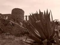 Ruderi Archeologici di Selinunte  - Selinunte (3238 clic)