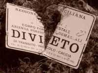 Balata di Baida - Monte Sparagio - in cava ...!  - Castellammare del golfo (2131 clic)
