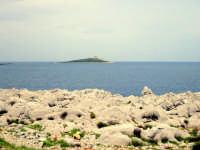 isola delle femmine  - Isola delle femmine (3656 clic)
