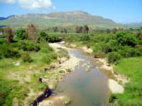 fiume s.leonardo nel pressi di vicari  - Vicari (10081 clic)