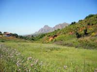 monte cane  - Ventimiglia di sicilia (3913 clic)
