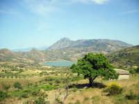 lago rosamarina e monte s.calogero  - Ventimiglia di sicilia (6629 clic)