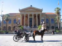 The Massimo Opera House in Palermo  - Palermo (3981 clic)