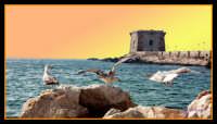 panorama marino  - Torre ligny (4978 clic)