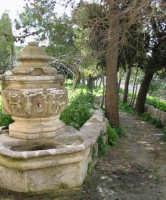 Convento S. Maria di Gesù - giardino  - Chiaramonte gulfi (2869 clic)