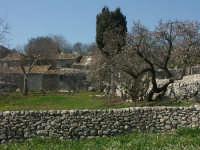 Paesaggio   - Chiaramonte gulfi (4014 clic)