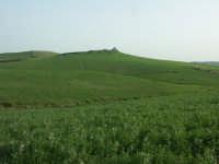 Paesaggio in territorio di Mazzarino  - Mazzarino (4214 clic)