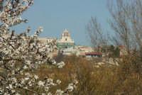 Veduta di Giarratana e mandorlo in fiore  - Giarratana (2414 clic)