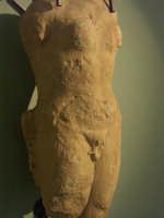 Museo Civico  - Grammichele (4017 clic)