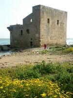 Vendicari: torre svava   - Noto (2925 clic)