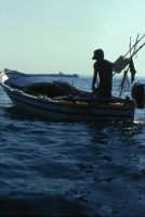 Pesca a Punta Castellazzo  - Ispica (2739 clic)