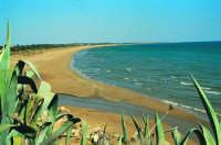 Spiaggia di S. Maria del Focallo  - Ispica (4394 clic)