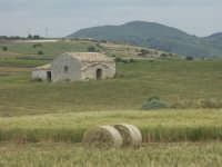 Paesaggio  - Mazzarrone (3499 clic)