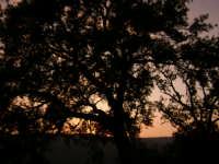 panorama contadino  - Ficarra (4433 clic)