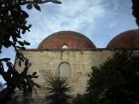 nella suggestiva cornice di San Giovanni agli eremiti ritroviamo la Palermo araba.  - Palermo (3921 clic)